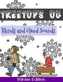 Orton Gillingham Winter Unit: Blends and Glued Sounds