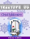 Orton Gillingham Winter Unit: Closed Syllables
