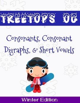 Orton Gillingham Winter Unit: Consonants and Short Vowels