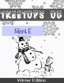 Orton Gillingham Winter Unit: Silent E/ Magic E/ vCe
