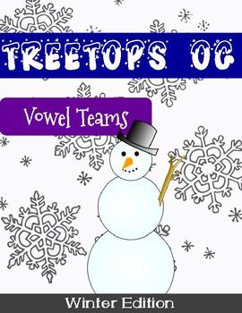 Orton Gillingham Winter Unit: Vowel Teams