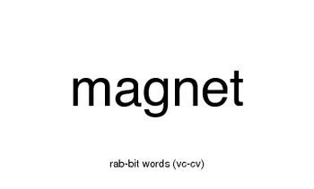 Orton-Gillingham (vc-cv) words (aka rabbit words) on cards