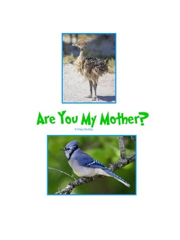 Osmo--Are You My Mother? Baby Animals and Their Parents