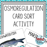 Osmoregulation in Fish Matching Activity
