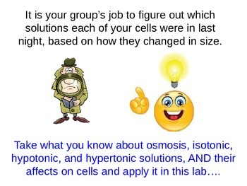 Osmosis Detectives Activity Intro and Instructions