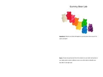 Osmosis Diffusion Gummy Bear Lab