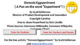 Osmosis Eggsperiment PowerPoint