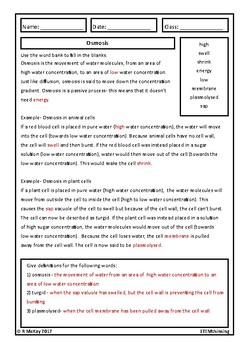 Osmosis Homework Review  Biology Worksheet Middle High School