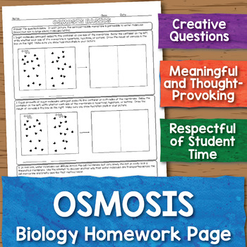 Osmosis Biology Homework Worksheet