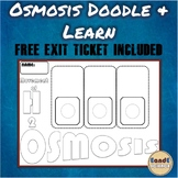 Osmosis (Movement of Water) Science Doodle & Learn Note w/