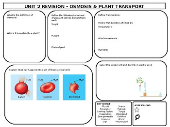 Osmosis & Plant Transport Revision Mat