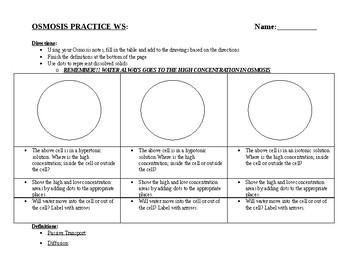 Osmosis Practice Worksheet