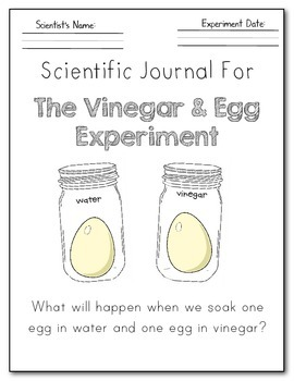 It's Science Time! Osmosis: The Vinegar and Egg Experiment ...
