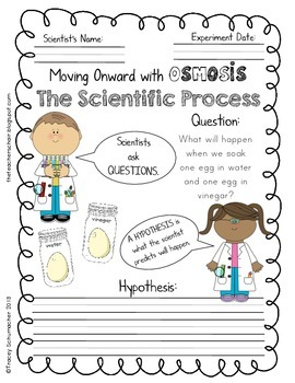 Easy Science Experiment about Osmosis - numbers to neurons