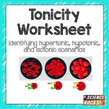 cell transport osmosis tonicity worksheet by science rocks tpt. Black Bedroom Furniture Sets. Home Design Ideas