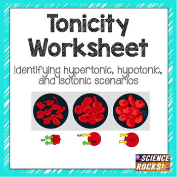 Cell Transport: Osmosis Tonicity Worksheet by Science Lessons That Rock