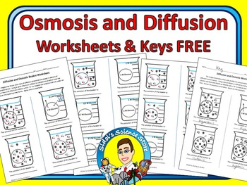 28 diffusion and osmosis worksheets for teachers diffusion and osmosis student handout. Black Bedroom Furniture Sets. Home Design Ideas