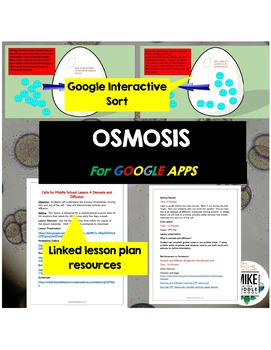 Osmosis and Diffusion for Middle School