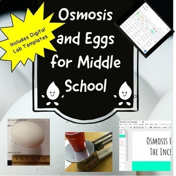 Osmosis and Eggs for Middle School
