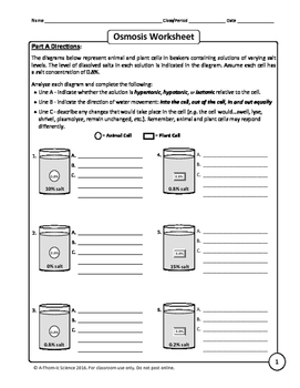 diffusion and osmosis worksheet answers diffusion and osmosis ...