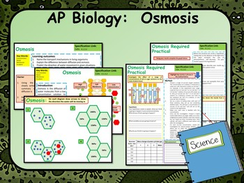 Osmosis in Cells Lesson