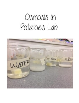 Osmosis in Potatoes Lab-INEXPENSIVE!!