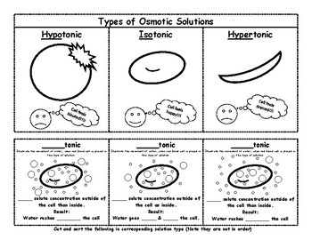 Osmotic Solution Types (interactive notebook)