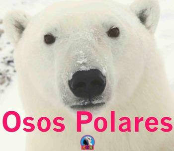 El Oso Polar - Presentación en PowerPoint y Actividades