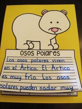 Osos Polares NO PREP Writing Craft