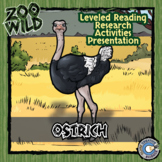Ostrich - 15 Zoo Wild Resources - Leveled Reading, Slides & Activities