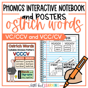 Ostrich Words (VCCCV) Interactive Notebook Activities and Posters