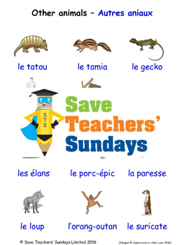 Other Animals in French Worksheets, Games, Activities and Flash Cards