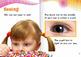 Our 5 Senses flip e-Book
