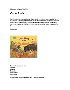 Our Animals- Special Needs