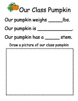 Our Class Pumpkin Worksheet