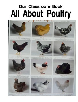 Our Classroom Book All About Poultry