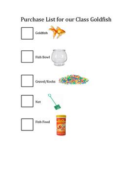 Our Classroom Pet Goldfish