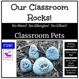 Our Classroom Rocks!  Pet Rocks with Writing Prompts and Activities!