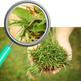 Our Envionment - Earth Day Theme Photos Photographs Clip Art Set Commercial Use