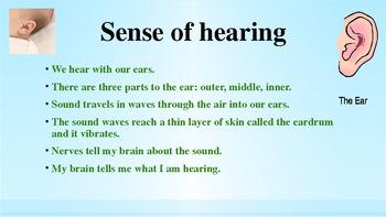 Our Fabulous Five Sense