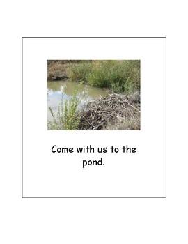 Our Family Adventure - Visits a Pond (Bundle)