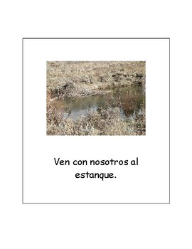 Our Family Adventure - Visits a Pond (English/Spanish)