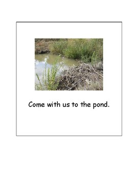 Our Family Adventure - Visits a Pond (English)
