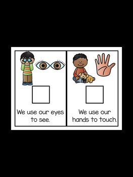Our Five Senses - An Adapted Book