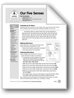 Our Five Senses (Everyday Literacy)
