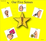 Our Five Senses for young student