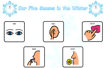 Our Five Senses in the Winter Language Board