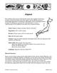 Our Global Village - Japan