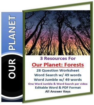 Our Planet: Forest Netflix Video Questions, Worksheet Word Search & Jumbo