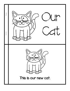 Our Preschool Cat Story